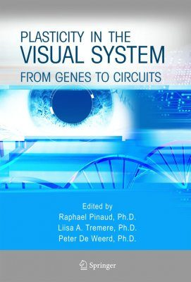 Plasticity in the Visual System