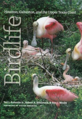 Birdlife of Houston, Galveston, and the Upper Texas Coast