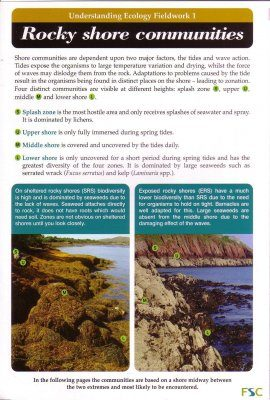 Rocky Shore Communities