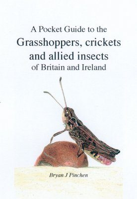 A Pocket Guide to the Grasshoppers, Crickets and Allied Insects of Britain and Ireland