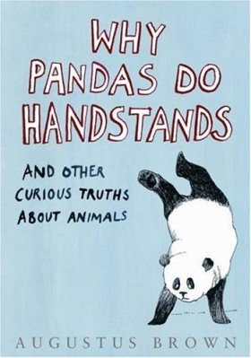 Why Pandas Do Handstands