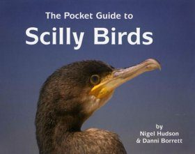 The Pocket Guide to Scilly Birds