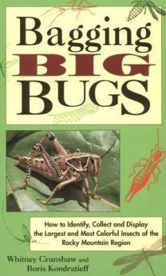 Bugs of The Rockies