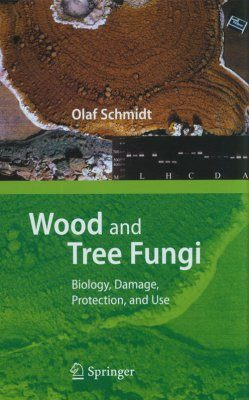 Wood and Tree Fungi