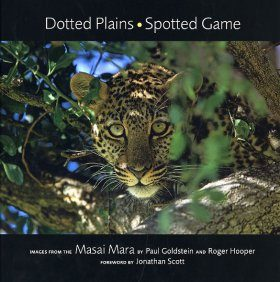 Dotted Plains - Spotted Game