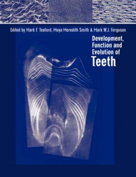 Development, Function and Evolution of Teeth