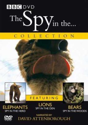 Spy in the... Collection - DVD (Region 2 & 4)
