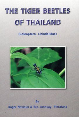 The Tiger Beetles of Thailand
