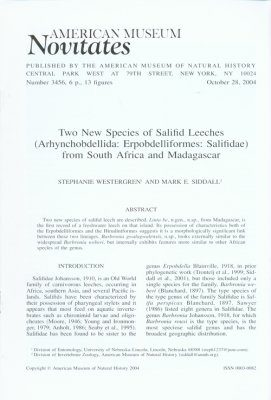 Two New Species of Salifid Leeches (Arhynchobdellida, Erpobdelliformes, Salifidae) from South Africa and Madagascar