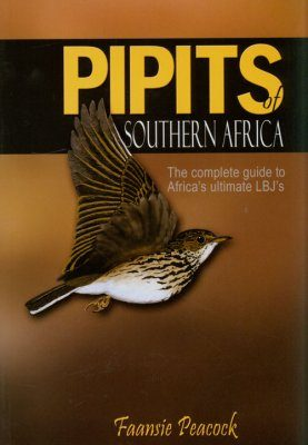 Pipits of Southern Africa