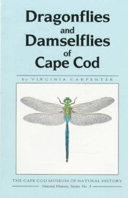 Dragonflies and Damselflies of Cape Cod