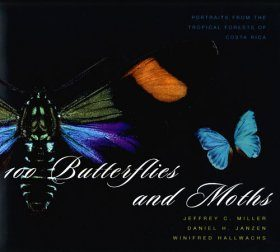 100 Butterflies and Moths