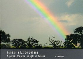 A Journey towards the Light of Doñana / Viaje a la Luz de Doñana