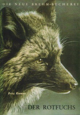 Der Rotfuchs [Red Fox]