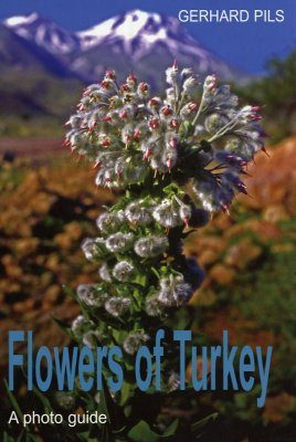 Flowers of Turkey