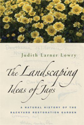 The Landscaping Ideas of Jays