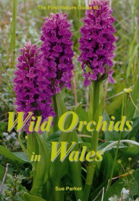 The First Nature Guide to Wild Orchids in Wales