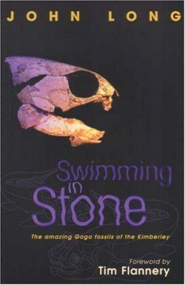 Swimming in Stone