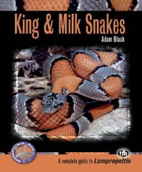 King and Milk Snakes