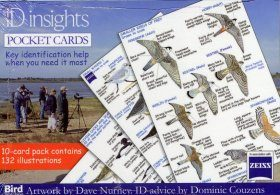 ID Insights Pocket Cards