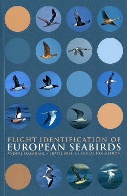 Flight Identification of European Seabirds