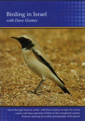 Birding in Israel (Region 2)