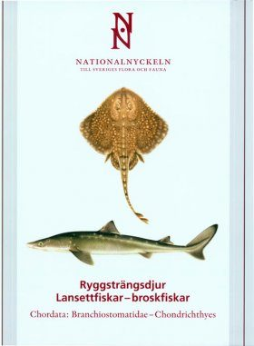 The Encyclopedia of the Swedish Flora and Fauna, Ryggsträngsdjur, Lansettfiskar-broskfiskar [Swedish]