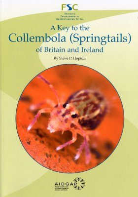 A Key to the Collembola (Springtails) of Britain and Ireland