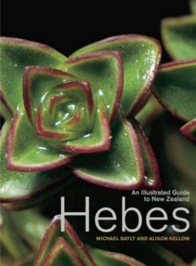An Illustrated Guide to New Zealand Hebes