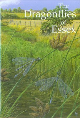 The Dragonflies of Essex
