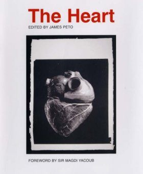 The Heart