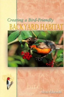 Creating a Bird-Friendly Backyard Habitat