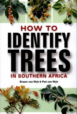 How To Identify Trees in Southen Africa