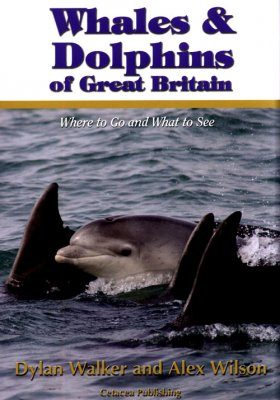 Whales and Dolphins of Great Britain