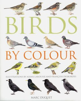 Birds by Colour