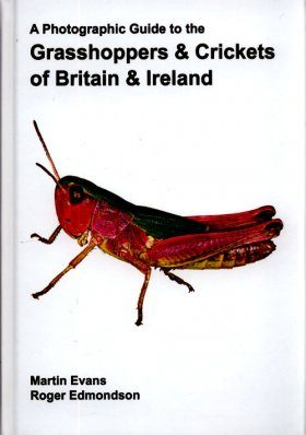A Photographic Guide to the Grasshoppers & Crickets of Britain and Ireland