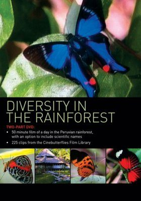 Diversity in the Rainforest (All Regions)
