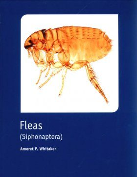 RES Handbook, Volume 1, Part 16: Fleas (Siphonaptera)