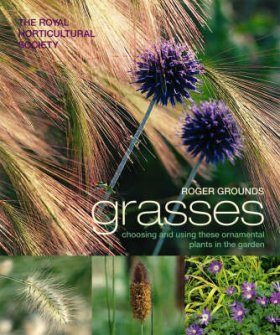 Grasses: Choosing and using these ornamental plants in the garden