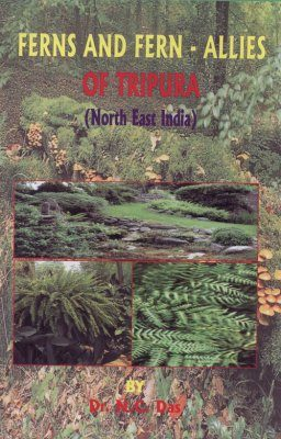 Ferns and Fern-Allies of Tripura: North East India