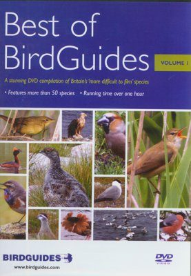 Best of BirdGuides Volume 1
