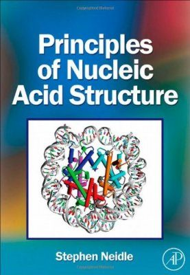 Principles of Nucleic Acid Structures