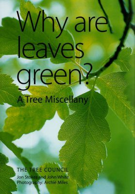 Why Are Leaves Green?