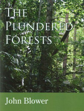 The Plundered Forests