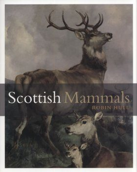 Scottish Mammals
