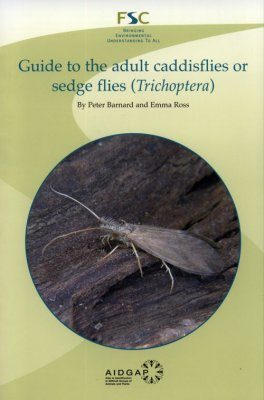 A Guide to the Adult Caddisflies or Sedge Flies (Trichoptera)