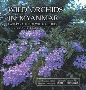 Wild Orchids in Myanmar, Volume 1