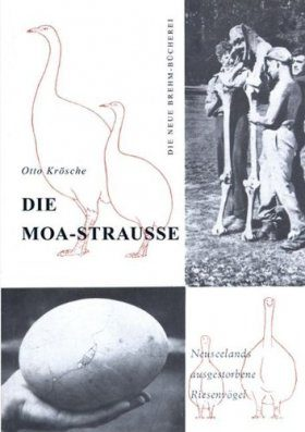 Die Moa-Strausse (Moas)
