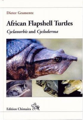 African Flapshell Turtles