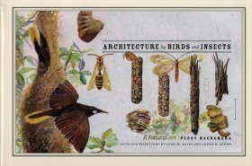Architecture by Birds and Insects